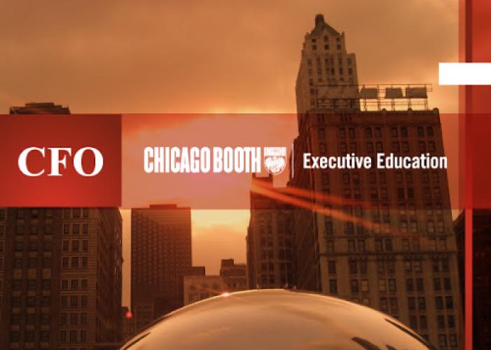 CFOs' Executive Program